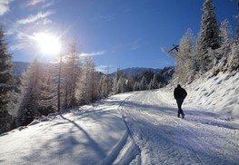 Galsterberg Winterwanderweg